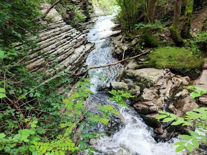 cosa fare domenica 8 agosto: visita le cascate dell'oasi di Baggero