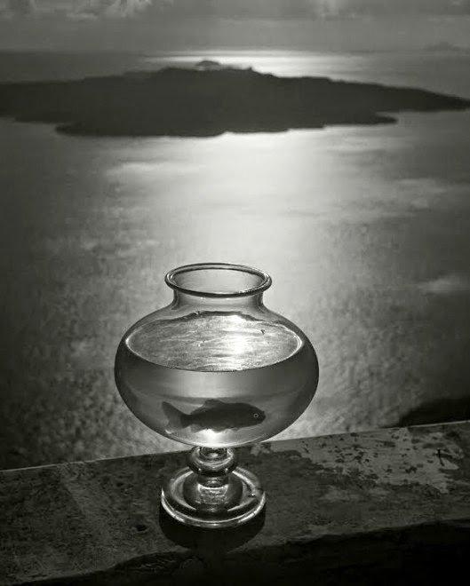 Goldfish bowl, Santorini Island, Cyclades, Greece, 1937 - Herbert-List
