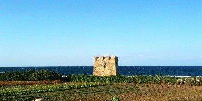 #lapugliaDIinverno il nuovo progetto di Inchiostro di Puglia