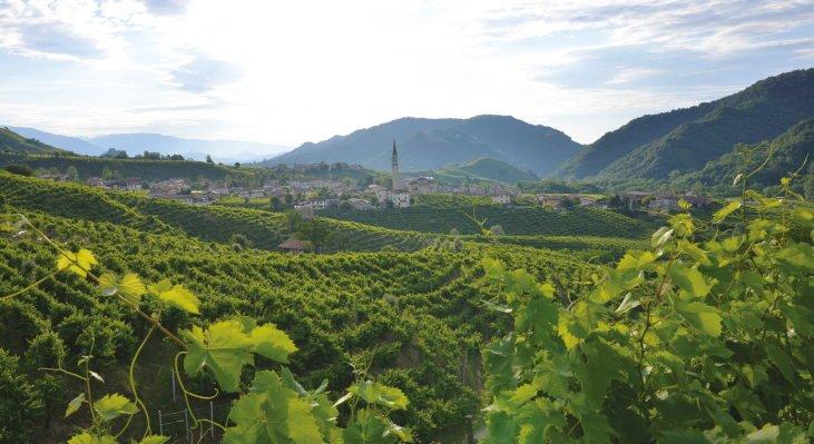 22 giugno a Milano: degustazione con i Vini rari di riva de La Fuìta