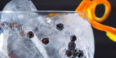 Sabato 23 e domenica 24 febbraio: Milano Gin & White Spirits Festival