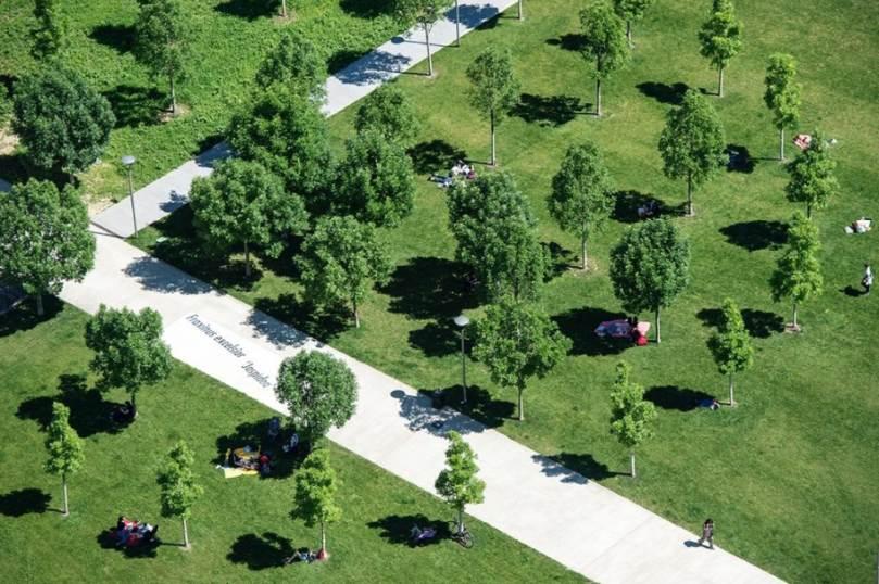 Visita guidata gratuita al parco BAM - Biblioteca degli Alberi