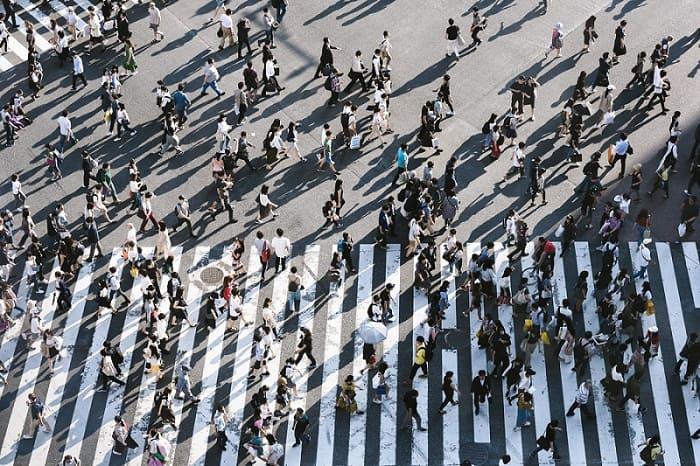 Cosa fare a Milano fino a domenica 20 ottobre: Wlaking Day