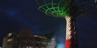 Coronavirus: a Milano riaccende l'Albero della Vita di Expo 2015