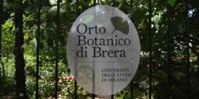 Ha riaperto al pubblico a Milano l'Orto botanico di Brera, dopo i mesi di chiusura a causa dell'emergenza Covid-19