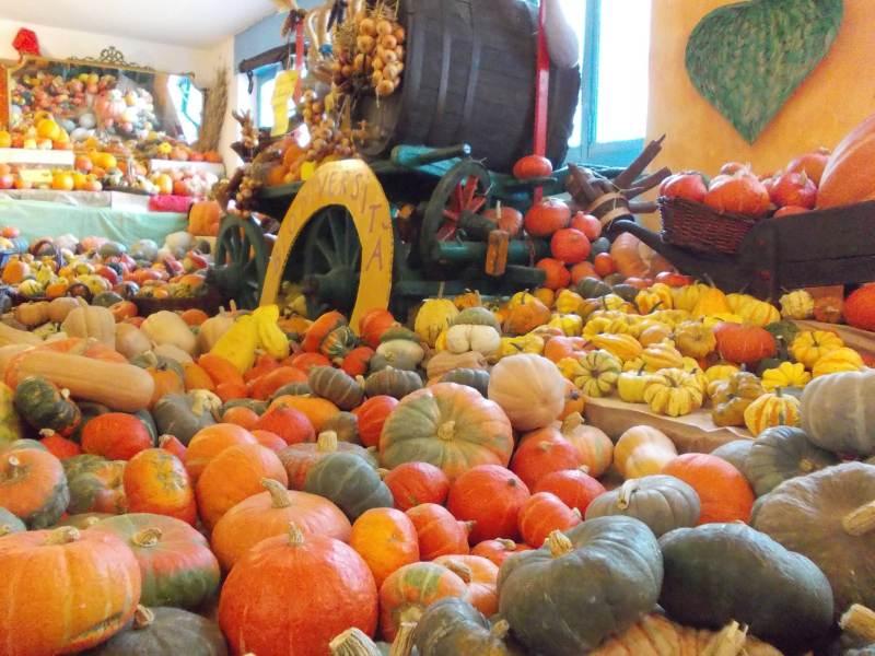 La Casa delle Zucche - 28° edizione di Tutto Zucche, mostra mercato ad Andezeno