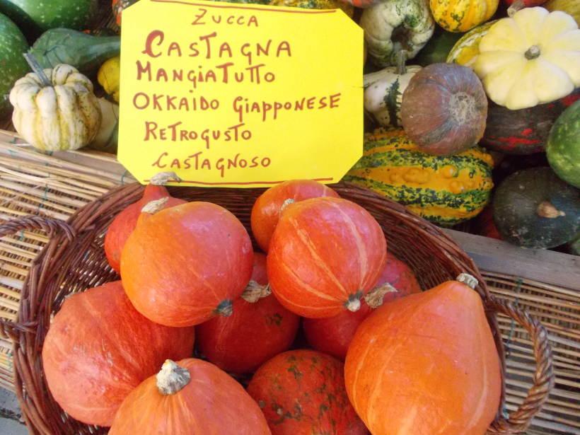 La Casa delle Zucche - 29° edizione di Tutto Zucche, mostra mercato ad Andezeno (TO)